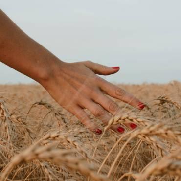 Cuidado de uñas tras el verano.
